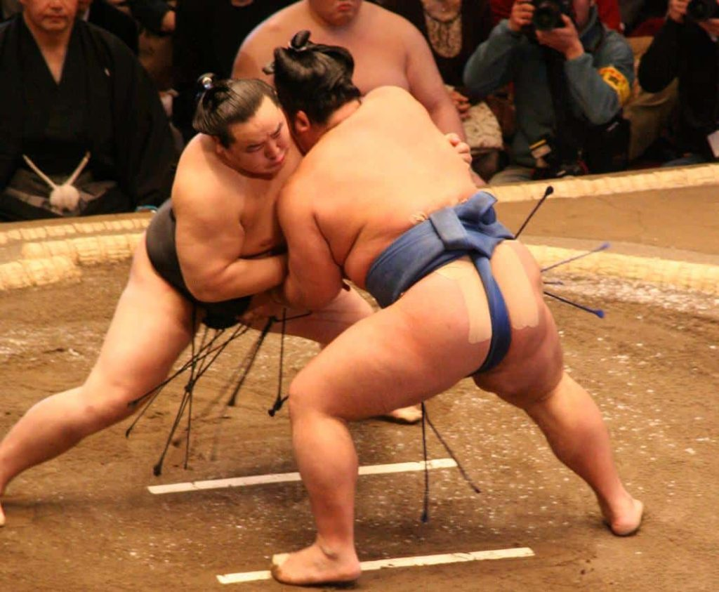 japanese sumo sports