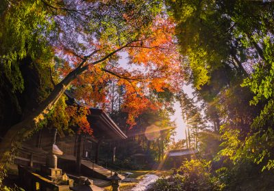 Top 10 Places to View Autumn Leaves in Japan