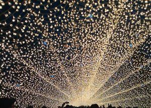Top 7 Places to See the Winter Illuminations in Japan