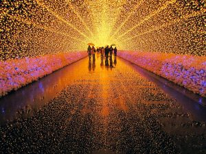Winter Illumination at Nabana no Sato
