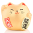 Small Feng Shui Good Fortune Lucky Cat