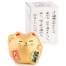 Small Feng Shui Good Fortune Lucky Cat with gift box