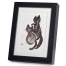 Cats In Love Black Frame A5 Japanese Print