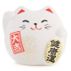 Small Feng Shui Happiness Lucky Cat